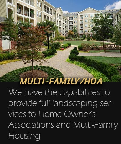 Multi-Family Landscaping Spartanburg
