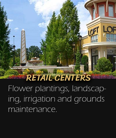 Retail Center Landscaping Spartanburg